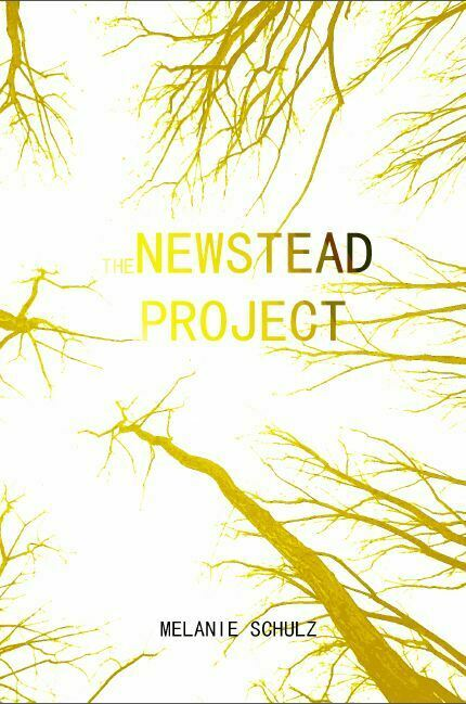 the giant. the school. the unexpected. the newstead project. By Melanie Schulz …